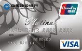 建行龙卡全球支付卡(VISA版)