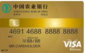 全球支付卡